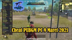 Cheat PUBGM PC 9 Maret 2021